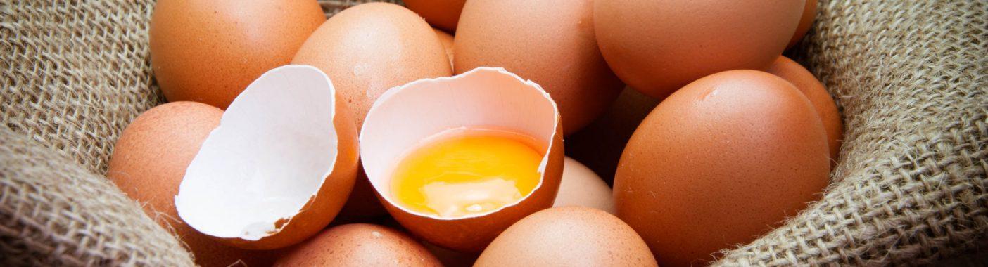 Produkty jajeczne